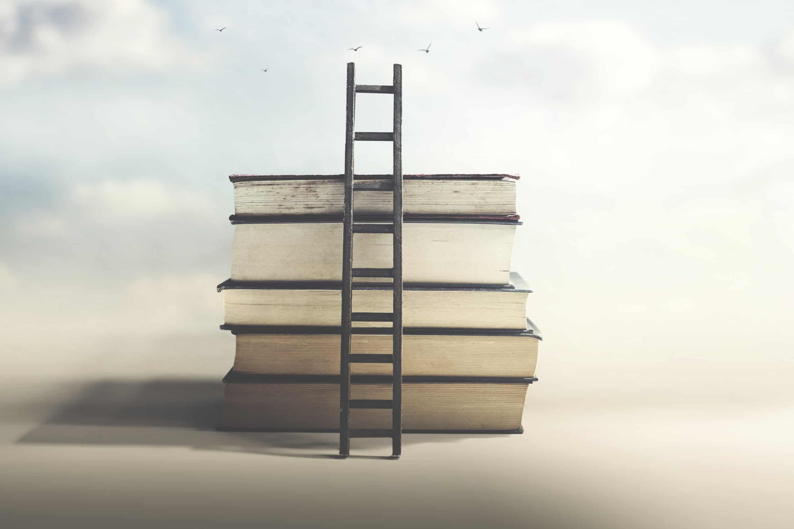 stack of giant books with a ladder; pleasure reading & assigned reading