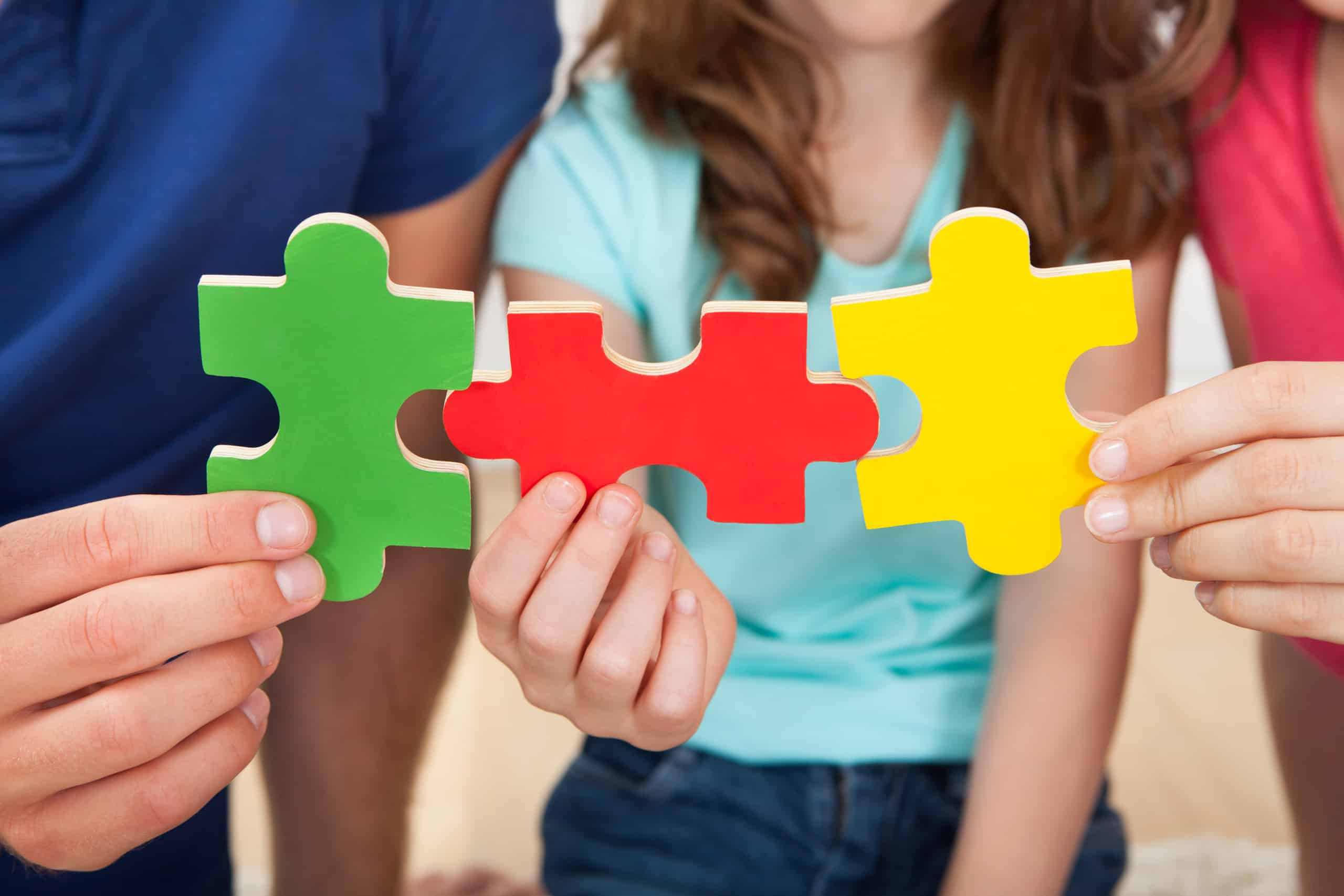 Family Joining Puzzle Pieces; schema